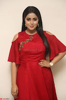 Poorna in Maroon Dress at Rakshasi movie Press meet Cute Pics ~  Exclusive 182.JPG