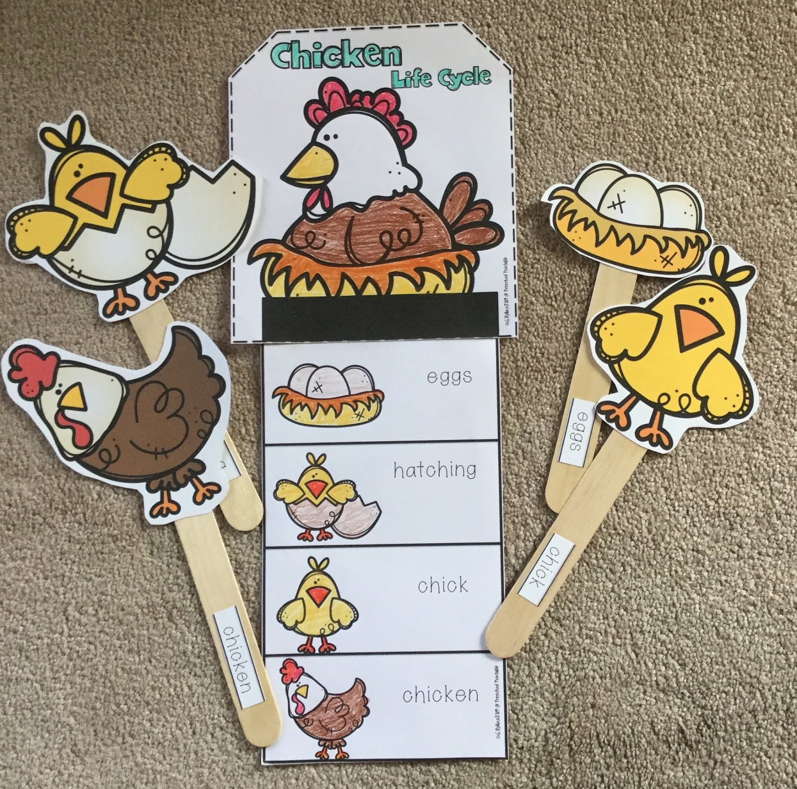 Chicken Easy Craft And Teacher Puppet Sticks Preschool