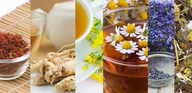 6 βότανα για χαλάρωση και ψυχική ισορροπία!