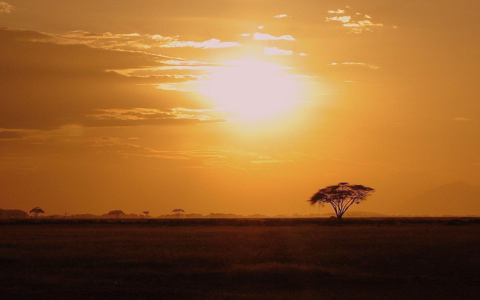 Africa Wallpapers Nature HD Wallpapers