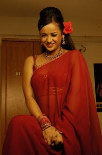 South-actress-hot-saree-picture