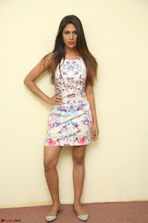 Nishi Ganda stunning cute in Flower Print short dress at Tick Tack Movie Press Meet March 2017 040.JPG