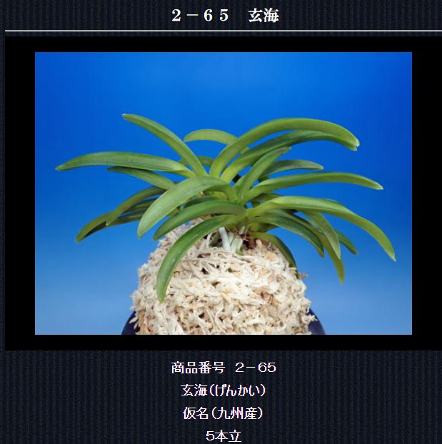 http://www.fuuran.jp/2-65.html