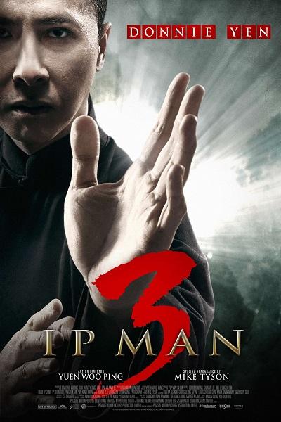 Download Ip Man 3 (2015) Hindi 720p + 1080p Bluray ESub