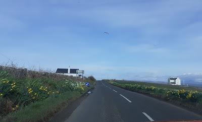 Skotsky vidiek