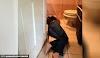 Wanita hamil maut terkena renjatan elektrik dalam bilik air, suami cuba bantu juga turut maut bersama