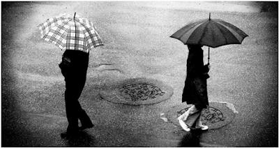 Ide Bisnis Sampingan yang Menguntungkan Saat Musim Hujan, Bisnis yang Menguntungkan di Musim Hujan