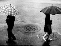 Bisnis Sampingan yang Menguntungkan Saat Musim Hujan