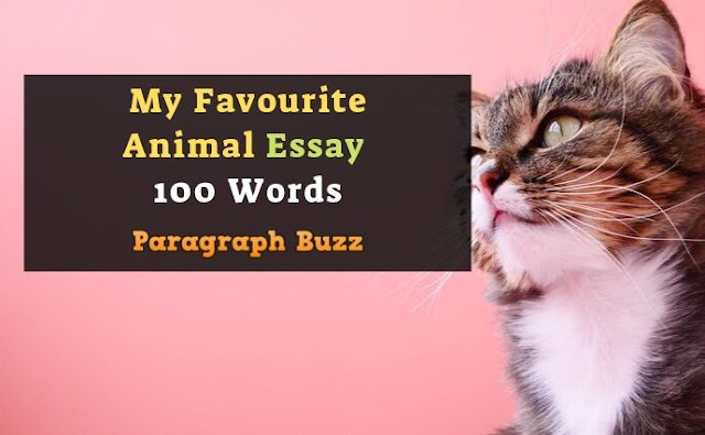 My Favourite Animal Essay 100 Words