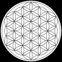 la-flor-de-la-vida-simbolo-y-significado-.jpg