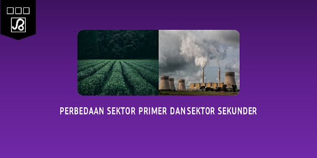 perbedaan sektor primer dan sektor sekunder