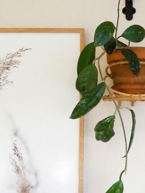 posterstore juliste sisustus skandinaavinen boheemi skandi-boho sisustus tyyli taulu seinä juliste kehys