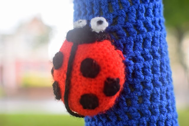 knitted ladybird, #RoaldDahl100, yarn bomb, Haverfordwest Yarn Bombers, Milford Haven, Pembrokeshire, Roald Dahl,
