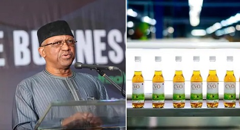 Plant used to make Madagascar COVID-19 drink exists in Nigeria- health minister