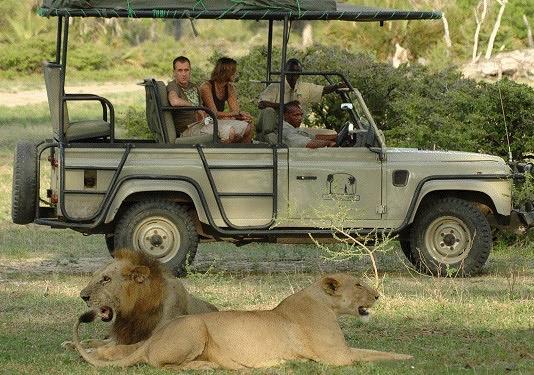 safari barato Kenia y Tanzania