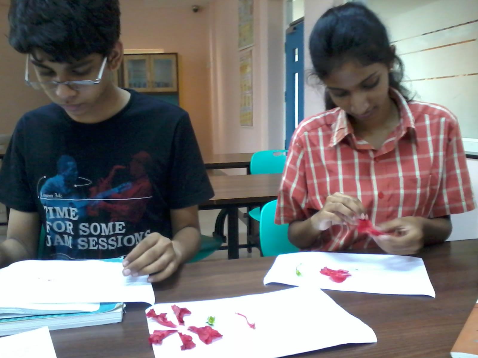 Oakridge Day Residential Campus Visakhapatnam Learning Through