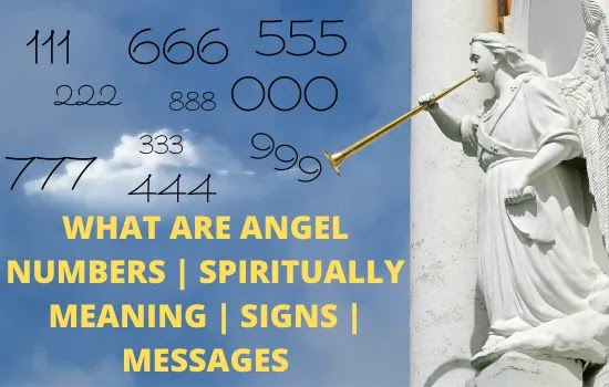 angel number,what are angel numbers, angel messages, angel signs, what does angel numbers mean,what does 555 mean in angel numbers,what does 333 mean in angel numbers,what does 333 mean angel numbers,21 12 angel numbers,meaning of 888 angel numbers,what does 11 11 mean in angel numbers,what does 444 mean in angel numbers,777 meaning angel numbers,meaning of 222 angel numbers,angel numbers 111 meaning,111 meaning angel numbers,what is my angel numbers,what does 222 mean in angel numbers,what does 666 mean in angel numbers,angel numbers 1010 meaning,angel numbers and their meanings,meaning of 555 angel numbers, what does 555 mean spiritually.