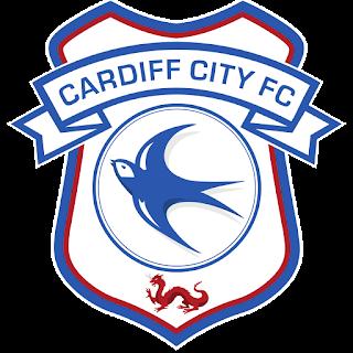 Logo Cardiff City FC DLS