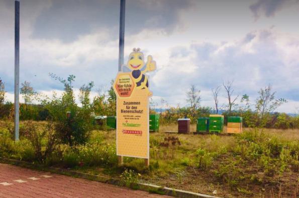 Φωτογραφίες μελιών από τα ράφια της Γερμανίας: Άφαντα τα Ελληνικά μέλια
