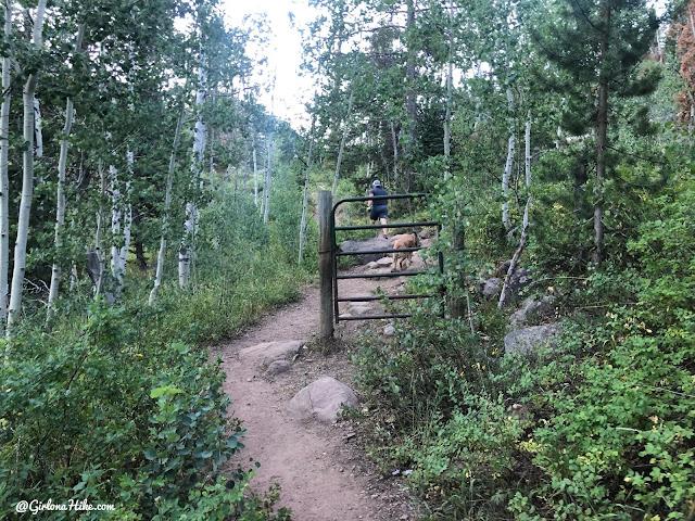 Hiking the Smith & Moorehouse Trail to South Erickson Lake