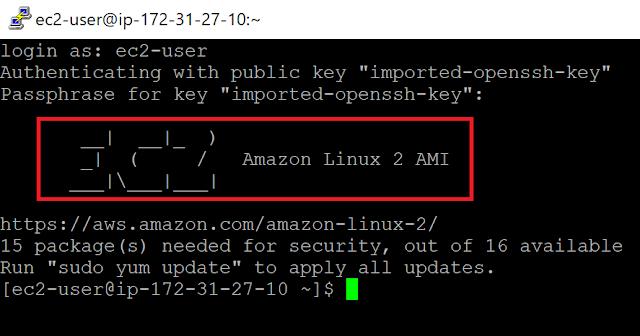Amazon Linux 2 へのログイン成功
