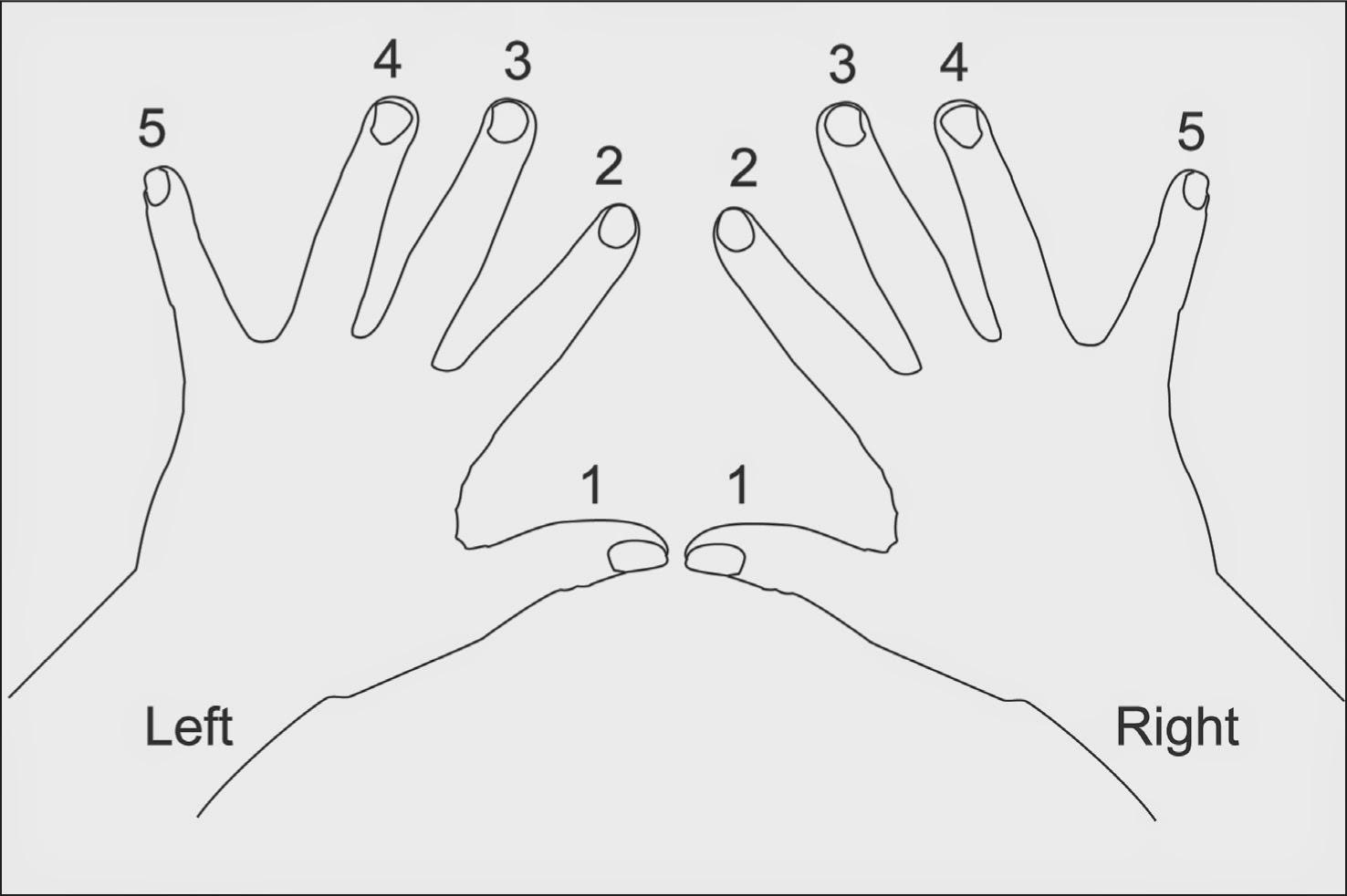 Piano Exercises For Dummies Pdf Download - xilusbestof