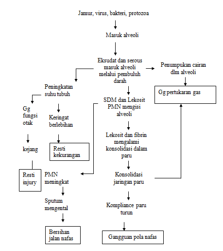Contoh Askep Pneumonia Pada Anak Brad Erva Doce Info