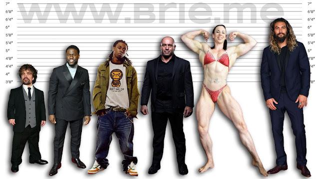 Peter Dinklage, Kevin Hart, Lil Wayne, Joe Rogan, Maria Wattel, and Jason Momoa height comparison