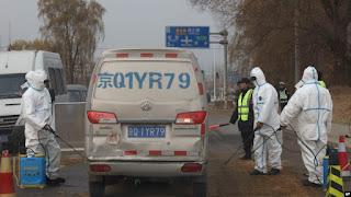 Flu Babi Baru Ditemukan di China Berpotensi Jadi Pandemi