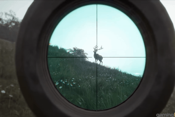 Best Hunting Games for PC