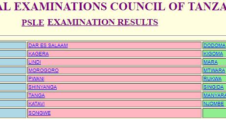Matokeo ya darasa la saba 2019 – NECTA PSLE Results 2019