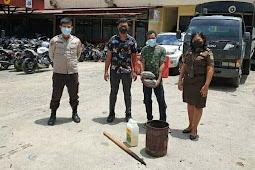 Satuan Reserse Narkoba Polresta Jayapura Musnahkan BB Ganja Atas 2 Kasus