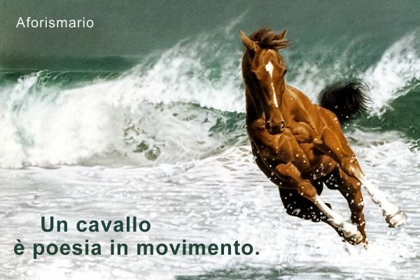 Conosciuto Aforismario®: Cavalli - 100 Frasi e proverbi ippici HW37