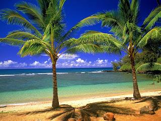 Tropical Lagoon   erc