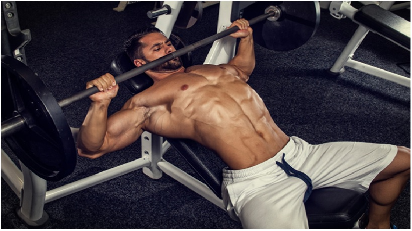 How vital area unit the Pectoral Exercises you decide on For Your Chest Workouts?