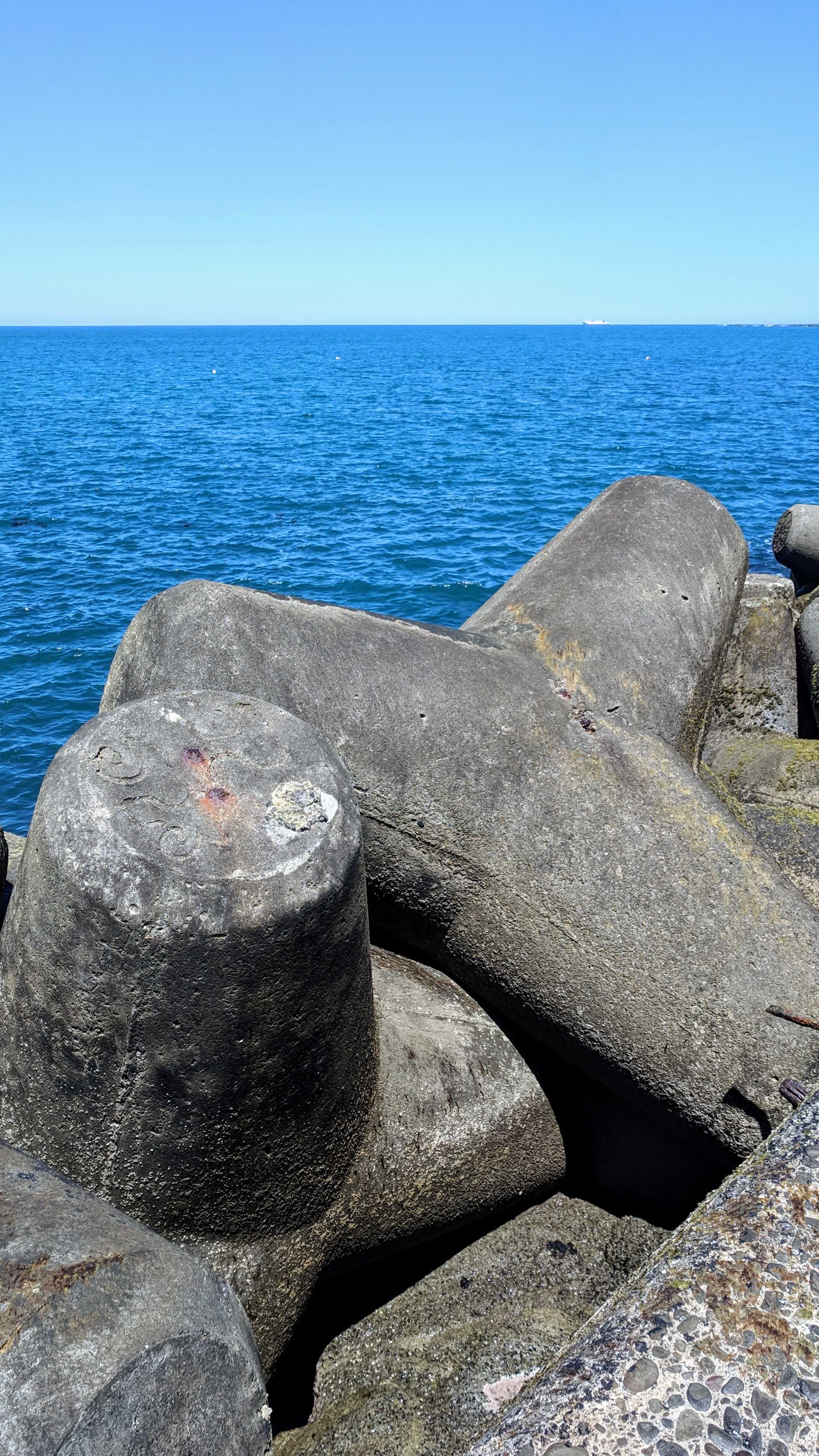 Curved blocks at Lyall Bay View Point and Fishing Pier