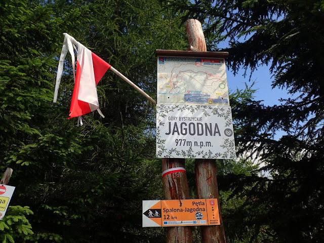Wierzchołek Jagodnej jest zaopatrzony w tabliczkę
