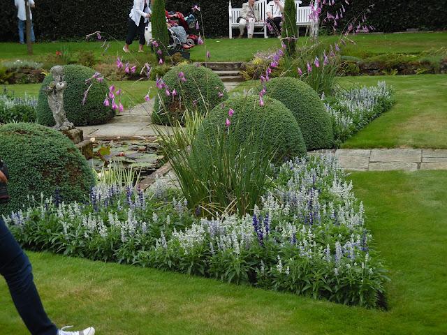 formalna sadzawka w ogrodzie