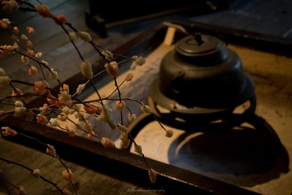 三渓園 合掌造り 花餅