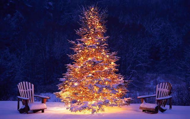 Mooie brandende kerstboom buiten in de sneeuw