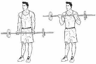 برنامج تمارين كامل لتضخيم العضلات للنحفاء (مع نظام التغذية) في أقل من 3 أشهر