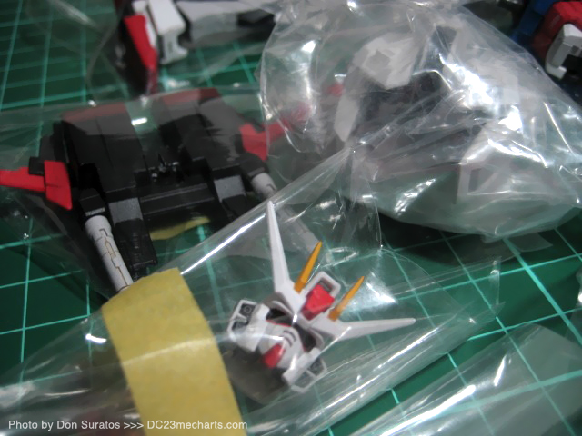 Packing the RG Aile Strike Photo