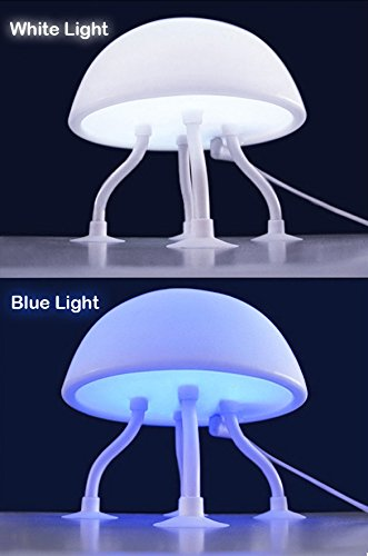 Jellyfish Night Lamp
