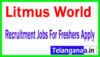 Litmus World Recruitment Jobs For Freshers Apply