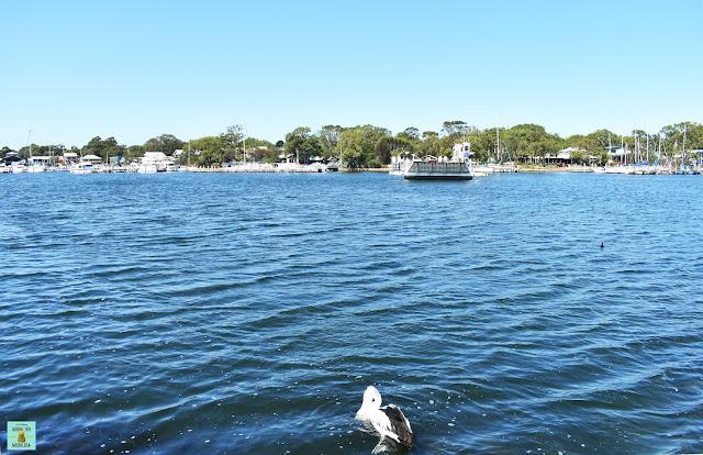 Ferry a Raymond Island, Australia