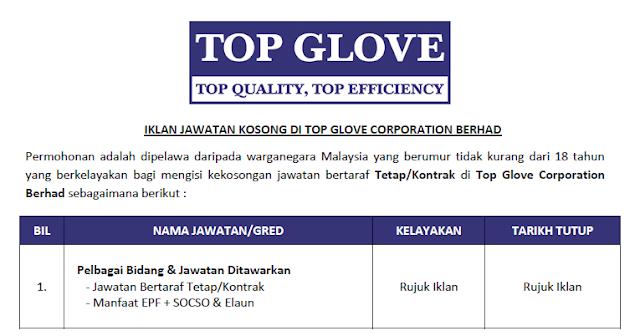 top gloves jobs