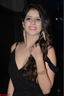 Kashish Vohra at Rogue Movie Audio Launch ~  (11).JPG