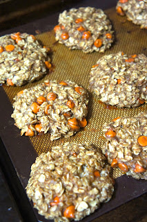 Oatmeal Snack Bites: Savory Sweet and Satisfying