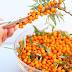 Ιπποφαές η τροφή που μας γεμίζει υγεία και ενέργεια