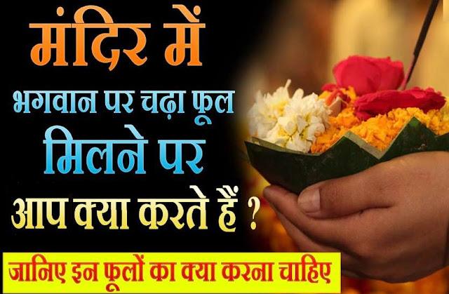 मंदिर से भगवान पर चढ़े हार-फूल मिलें तो उनका साथ ऐसा क्या करें? कि पाप न लगे, जानिये यहां